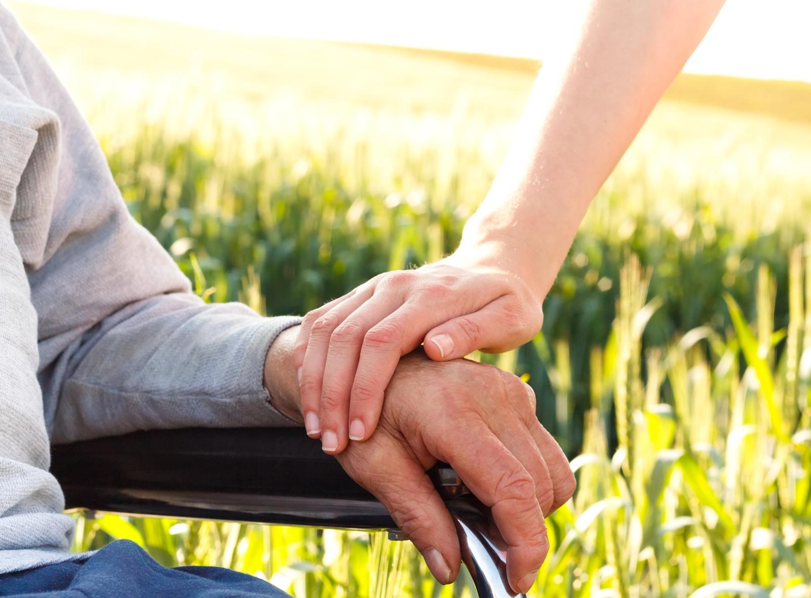 Aide aux personnes handicapées et fragilisées - Cléyade - Services